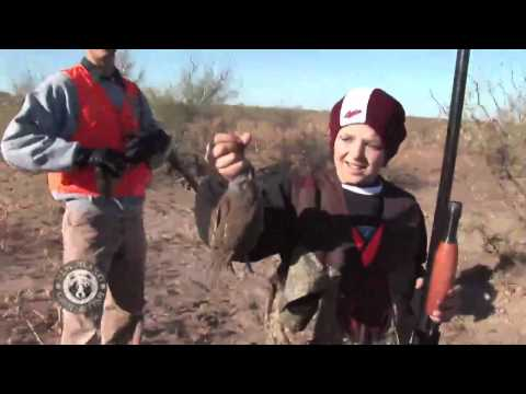 Quail Hunting: Opening Day