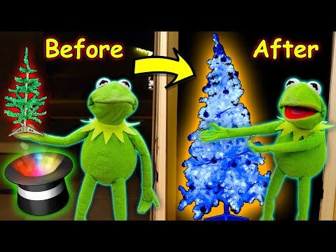 Kermit the Frog buys a MAGIC Christmas Tree! (Ft Elmo)