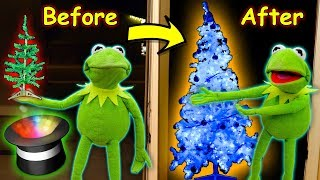 kermit-the-frog-buys-a-magic-christmas-tree-ft-elmo