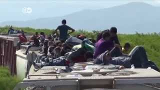 El tren de la muerte pelicula mexicana