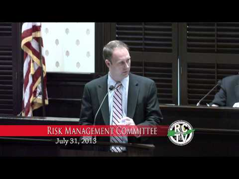 Risk Management Committee - July 31, 2013