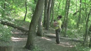 Promenade Dans Les Bois Mai 2010