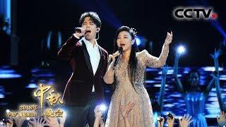 [2018中秋晚会] 歌曲《我和你》 演唱:王莉 迪玛希 | CCTV中秋晚会