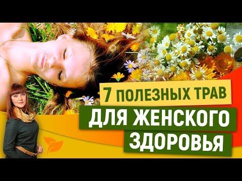 0 Травы для женского здоровья