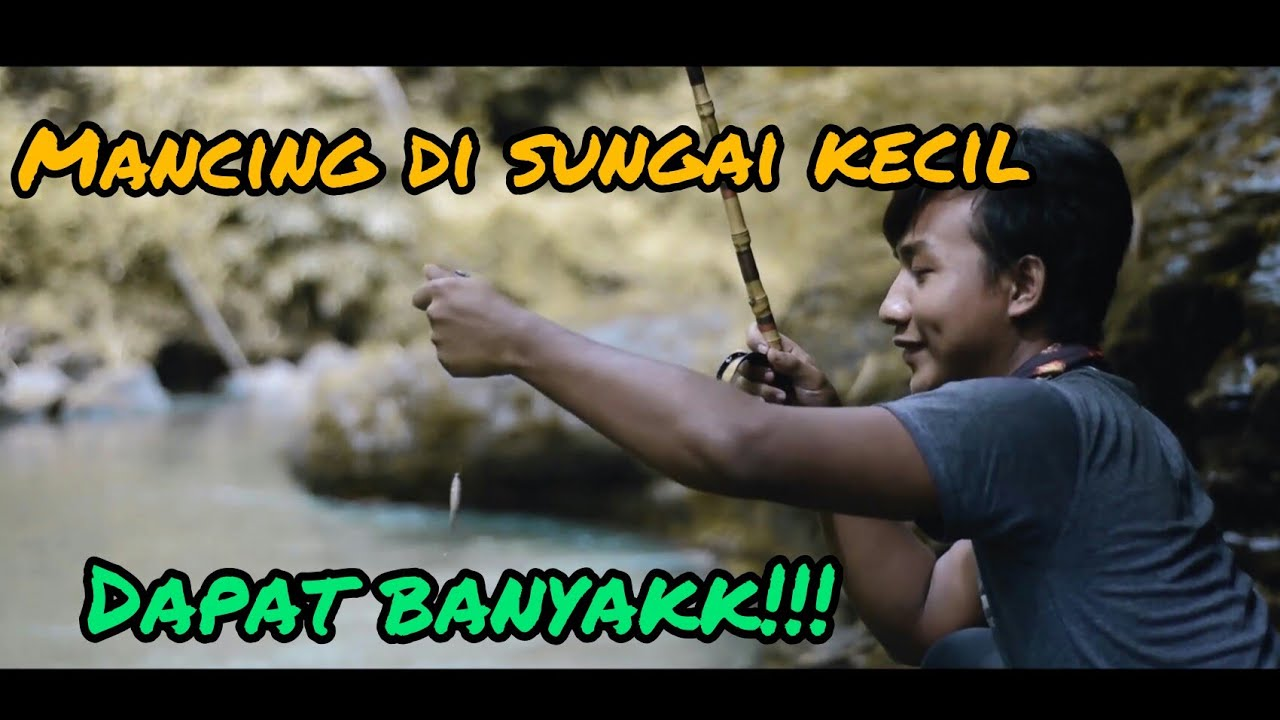 Memancing Ikan dan Berpetualang    Cinematic Video Mancing ...