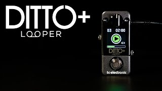 Ditto + Looper - Official Product Video