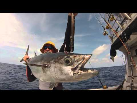 Star Reefs Fishing, Papua New Guinea