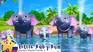 Посчитай 5 слонов | Мои первые уроки | Детские песни | Little Baby Bum