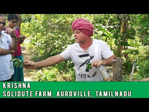 Eat Local Week at Solitude Farm Auroville with Krishna & Joy Of Impermanance | Auroras Eye Films
