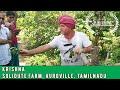 Eat Local Week at Solitude Farm Auroville with Krishna & Joy Of Impermanance | Auroras Eye Films