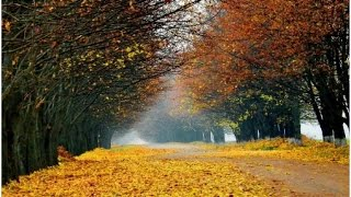 Народні прикмети, прогноз погоди на 18 листопада 2016 року