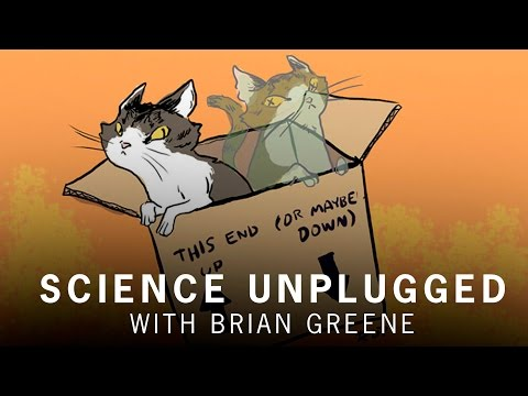 What is schrodinger's cat?