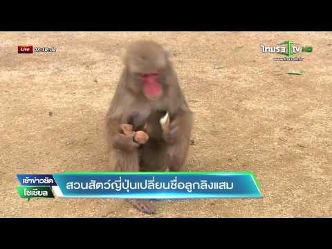 สวนสัตว์ญี่ปุ่นเปลี่ยนชื่อลูกลิงแสม