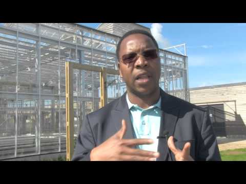 Genetically Modified Crops In Africa: Current State And Future Potential