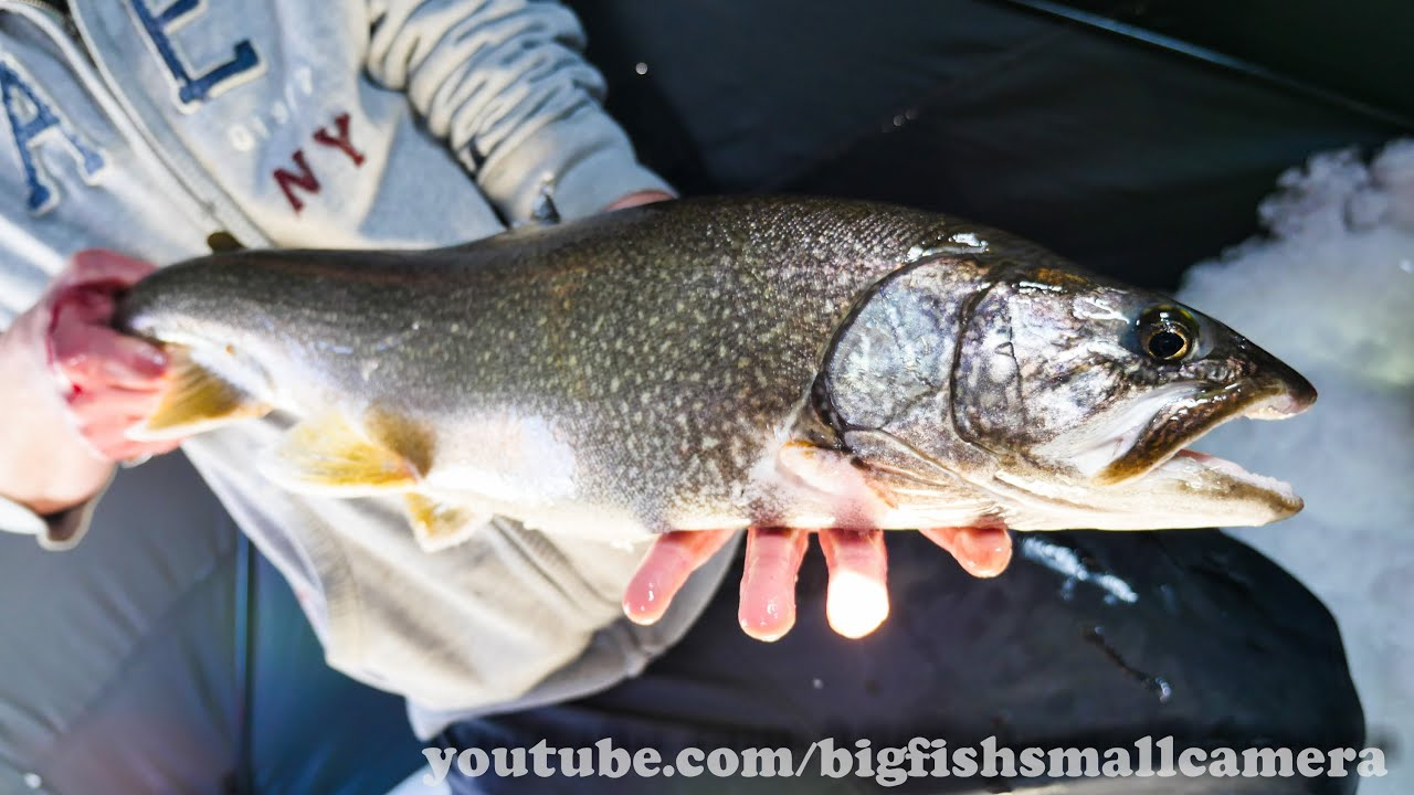 March 22 2015 lake trout ice fishing youtube for Lake trout ice fishing