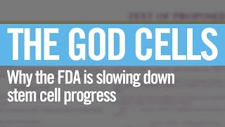 "Why the FDA is slow on stem cells - ""The God Cells"" - stemcellsmovie.com"