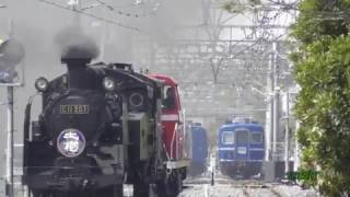 【相棒と試運転】 DE10試運転にSL加わる!!  東武鉄道 南栗橋車両管区 SL見学広場 thumbnail
