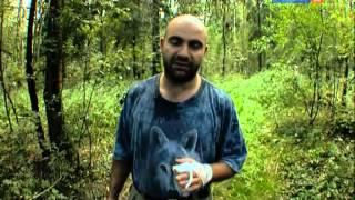 Рейтинг Баженова :Самые опасные животные России 3 серия