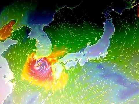 Typhoon Chaba in Japan & South Korea /Tifón Chaba