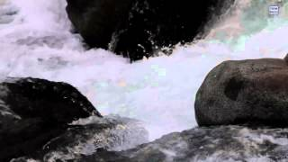 River Water Sound For Meditation - calming flowing dripping waterfall sounds-Meditation Peace Video
