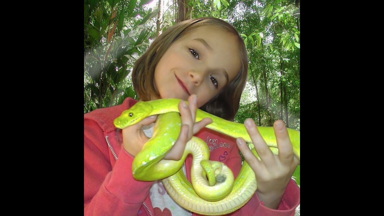 Snake Bytes Tv Top 10 Snakes Snakebytestv: Little Girl Loves Snakes! SnakeBytesTV