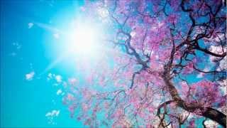 """Casta diva"" from ""Norma"" - flute solo - Warsaw Philharmonic Orchestra"