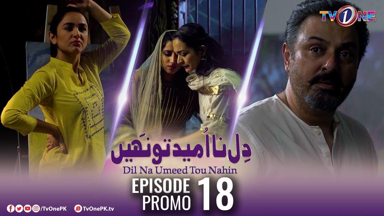 Download Dil Na Umeed Toh Nahi   Episode 18 Promo   Tv One Dramas