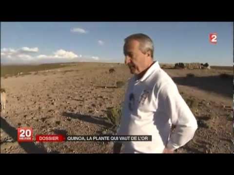 Reportage 20h France 2 quinoa bio Priméal de la société Ekibio dirigée par Didier Perréol