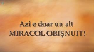 Sarah Mclachlan - Ordinary Miracle (versuri romana)