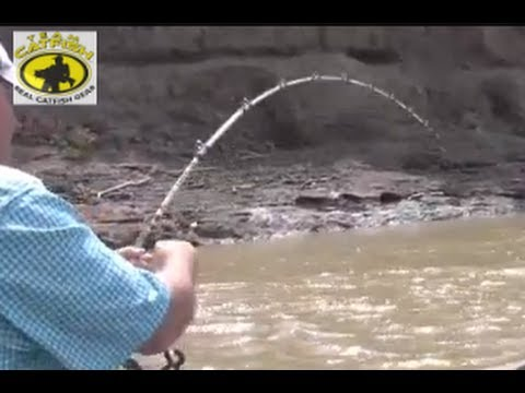 How To Catch Channel Catfish In A Muddy Creek With Catfish Bait. *Team Catfish Video* 1