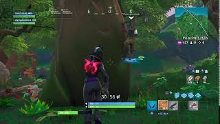 Fortnite Bug Fun