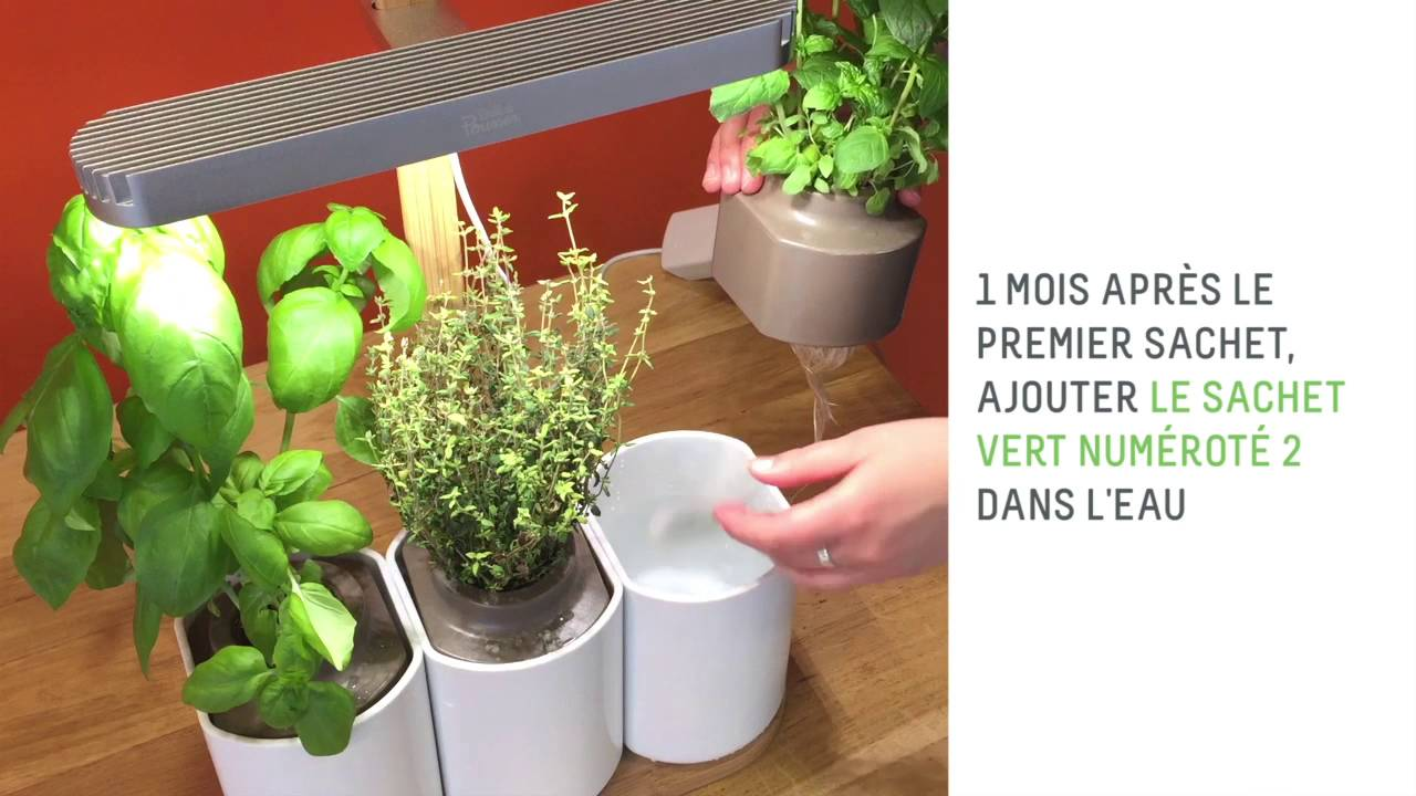 les seconds nutriments des plantes de lilo votre potager. Black Bedroom Furniture Sets. Home Design Ideas