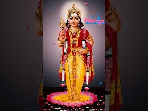 Lord Muruga WhatsApp Status #murugan Devotional Song #god Songs #tamil Bakthi Padalgal #lord Muruga