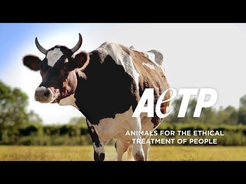 Die Wahrheit über Menschenmilch / Animals for the Ethical Treatment of People