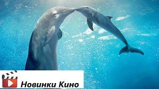 История дельфина 2 (трейлер русский) [Новинки Кино 2014]