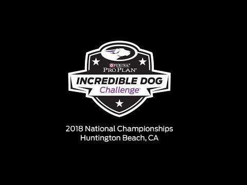 2018 Purina Pro Plan Incredible Dog Challenge