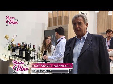 Juan Ángel Rodríguez (Fecovita) PROWEIN-PASIÓN POR EL VINO (Programa 2 Bloque 2 Temporada 3)