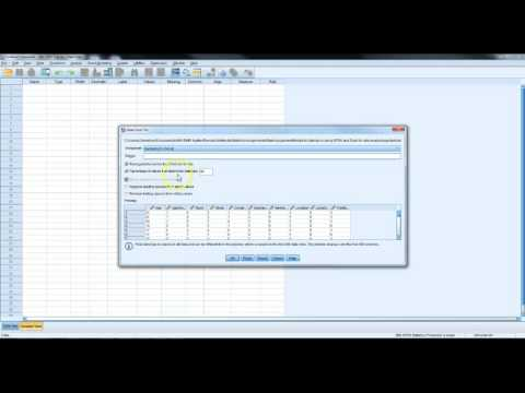 Import Excel Data Into SPSS