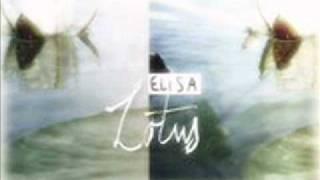 Stranger (Elisa)
