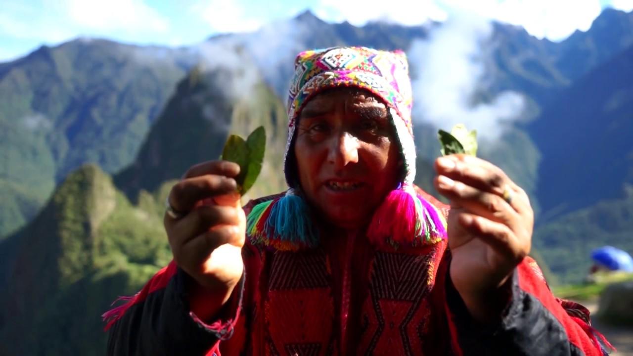 Ayahuasca and San Pedro Healers, Energy Healing Retreats in