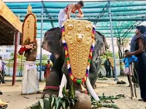 Aana KeraLaM... Thechikottukavu Ramachandran,Thrikadavoor Sivaraju, Pambady rajan, Kalidasan,Mk Karn