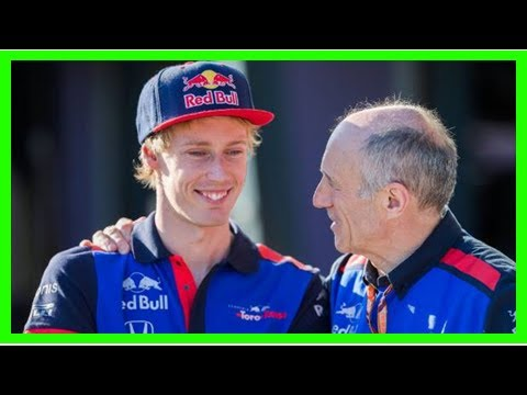 Breaking News | Toro Rosso F1 boss backs Brendon Hartley despite slow start to season