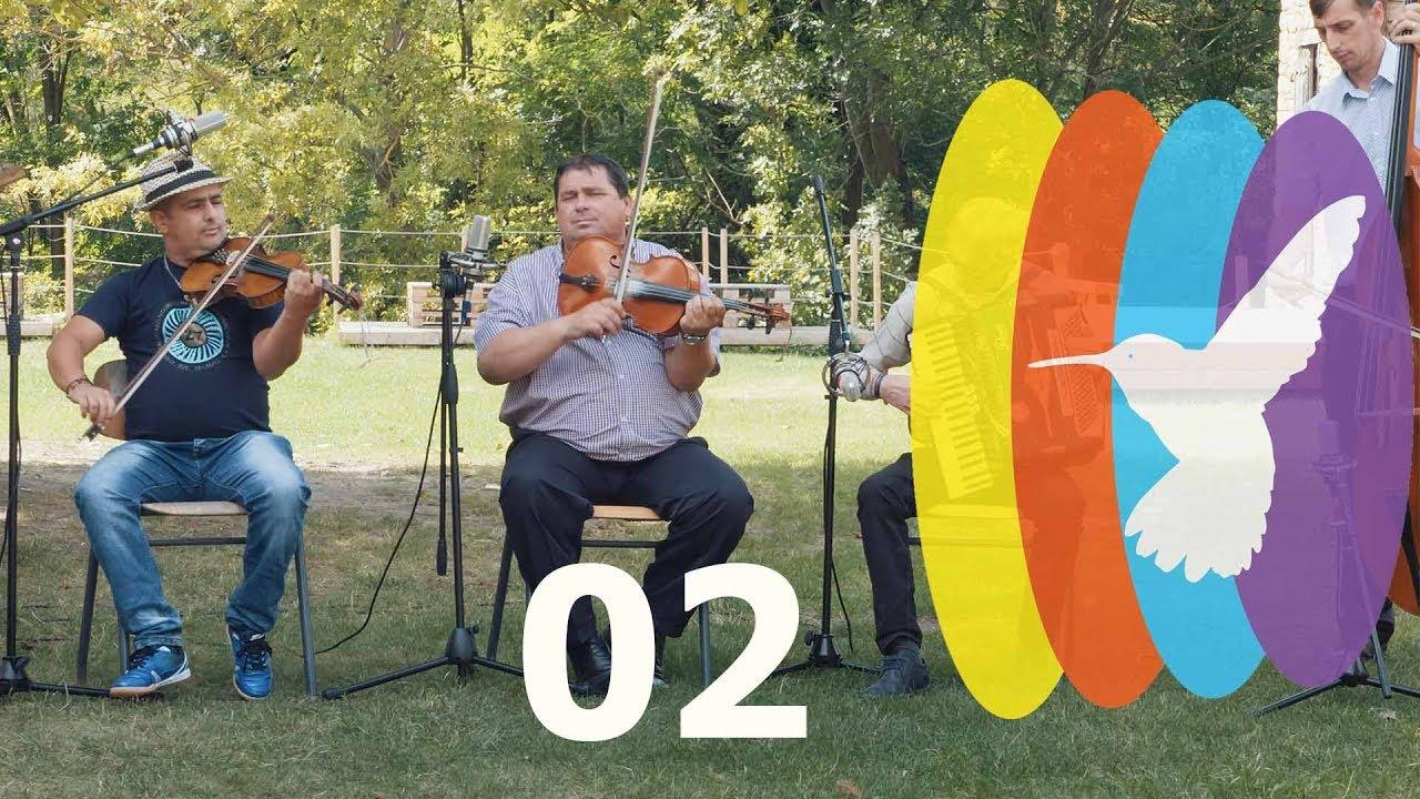 1bb1eddf8c Kalotaszegi népzene 02 / Invertita, csárdás, szapora /// Hummingbird  Sessions