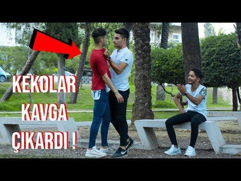 KEKOLARA DİK DİK BAKIP KIŞKIRTMAK !!