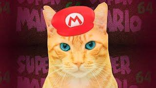 My Cat In Super Mario 64