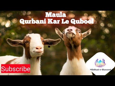 Download Maula Kar Le Kabool //Eid Mubarak // Qurbani Karengey Dil Se Karengey Whatsaap Status