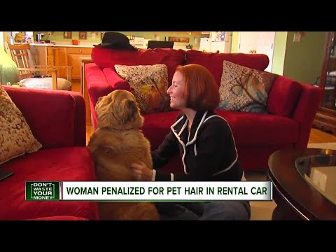 Woman penalized for pet hair in rental car