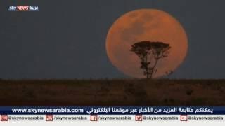 العالم على موعد مع القمر العملاق