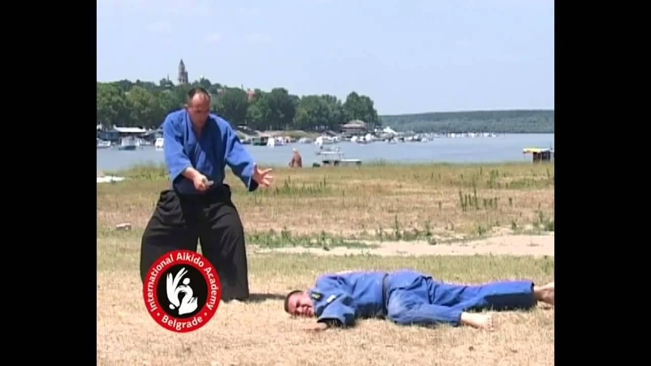 Aikido techniques by Bratislav Stajic: Yokomenuchi sankyo
