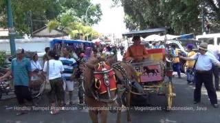 STAFA REISEN Video: Java Rundreise, Indonesien